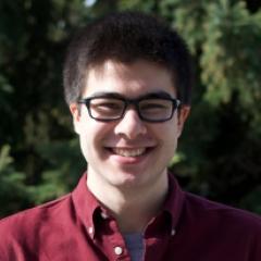 Darius Ansari